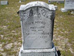 Sarah Catherine Sallie Whittington Norris 1848 1937 Find A