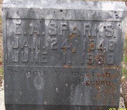 Eliza A <I>Williams</I> Sparks