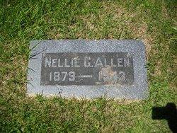 Nellie Blanche <I>Gasser</I> Allen