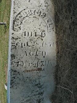 Augustus Ely