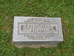 Celia Jane Adams