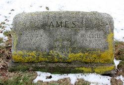 Rosebell <I>Watkins</I> Ames
