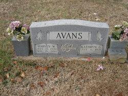 Kathryn G Avans