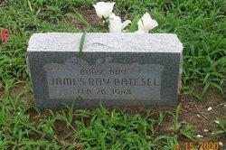 James Ray Batesel