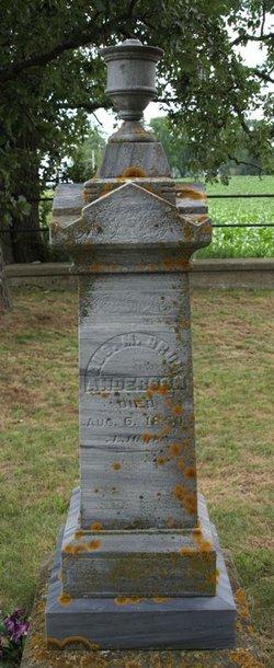 Augustinus Meldal Brun Anderson
