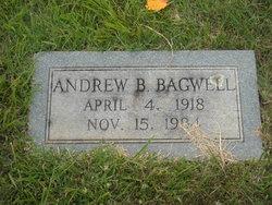 Andrew Burton Bagwell
