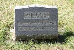 Henry Frederick Meiggs