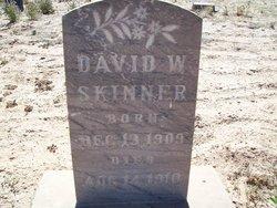 David W Skinner
