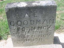 A E Goodman