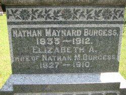 Elizabeth Ann <I>Castle</I> Burgess