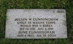 Julian W Cunningham