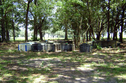 King Bull Estate Cemetery