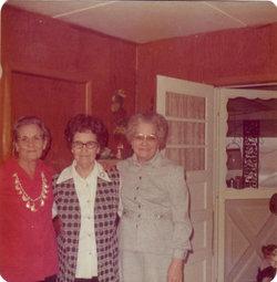 "Willie Elizabeth ""Aunt Bill"" <I>Scroggins</I> Williams"