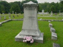 Mary Ann <I>Service</I> Gaffney
