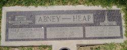Tenna Louise <I>Turley</I> Abney-Heap