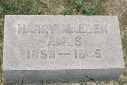 Harry Malden Amos