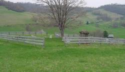 Rinehart-Scott Cemetery