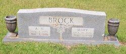 A N Brock