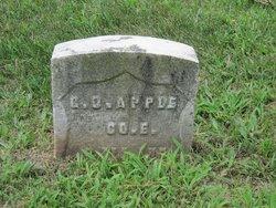 George Oliver Apple