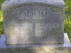 Ambrose M Odum