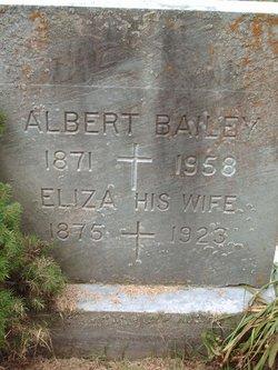 Albert A. Bailey