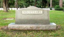 James William Necessary