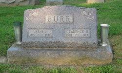 Irene Isabel <I>Smith</I> Burr