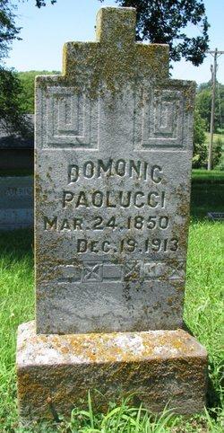 Domonic Paolucci