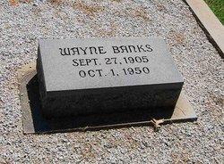 Wayne Banks