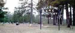Palestine AME Church Cemetery