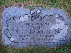 """Jacob Michael """"Jake"""" Acey"""