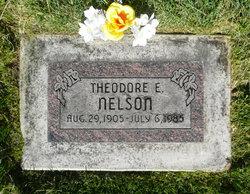 Theodore Nelson