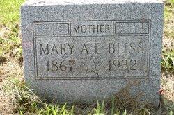"Mrs Mary Ann ""Mollie"" <I>O'Brien</I> Bliss"