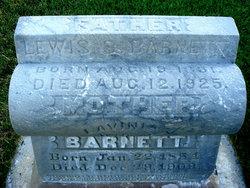 Lewis Scott Barnett
