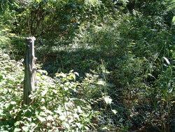 Starnes Spring Cemetery