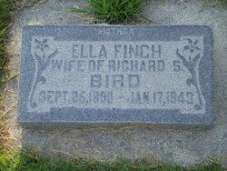 Ella <I>Finch</I> Bird