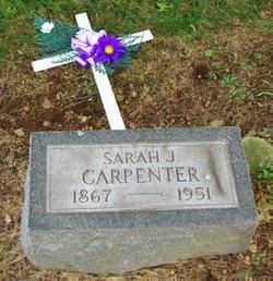 Sarah Jane <I>Lakes</I> Carpenter
