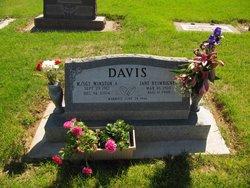 Winston Arlington Davis