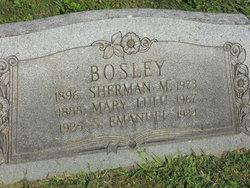 Mary Lulu Bosley