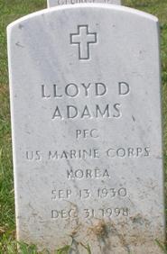 Lloyd David Adams