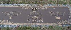 "William S. ""Bill"" Gibson, Jr"