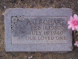 Alvin J Echart
