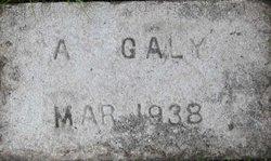 Albert Galy