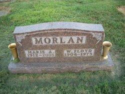 Marie Anna <I>Dove</I> Morlan
