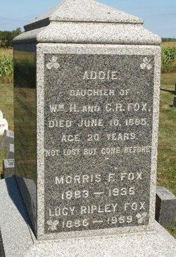 Morris F Fox