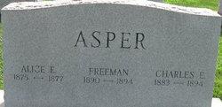 Alice E Asper