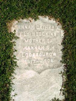 Hannah Catherine <I>Ely</I> Hodgkins