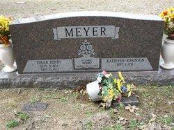 Edgar Henry Meyer