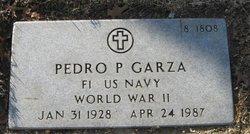 Pedro P Garza