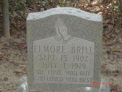 Elmore Brill